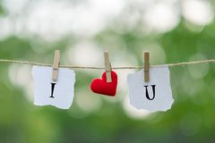 I LOVE YOU word on paper and red heart shape decoration hanging on line with copy space for text on green nature background. Love royalty free stock photo