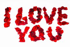 I love you - words made of red rose petals. Beautiful romantic backgrounds.  royalty free stock images