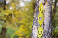 I love you written on an autumn leaf Stock Image