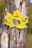 I love you written on an autumn leaf Stock Photos