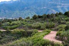 I lucci della strada della montagna della sporcizia alzano la catena montuosa verticalmente Colorado Springs immagine stock
