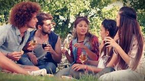 I lyckliga vänner för högkvalitativt format i parkera som har picknicken lager videofilmer