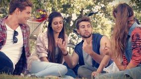 I lyckliga vänner för högkvalitativt format i parkera som har picknicken arkivfilmer