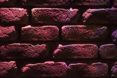I mörka purpurfärgade signaler Royaltyfri Foto