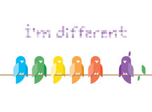 Im different. Family of birds in rainbow colors si Stock Photography