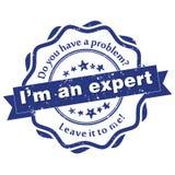 I ` m ein Experte - Schmutzstempel lizenzfreie abbildung