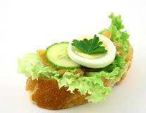 I'm hungry. Fresh sandwich with salmon, iceberg lettuce, cucumber, piece of parsley witout any sauce Royalty Free Stock Photos
