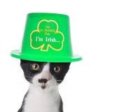 I'm Irish. Cute black and white kitten wearing a St Patricks day hat Royalty Free Stock Photo