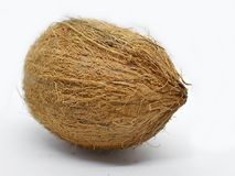 I ` M precis en vanlig kokosnöt Royaltyfri Bild