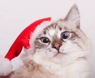 I'm Santa. Stock Photography