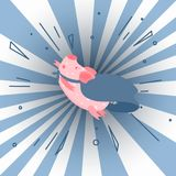 I`m superman. Cute cartoon pig illustration. Royalty Free Stock Image