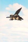 I maiali possono volare Immagini Stock Libere da Diritti