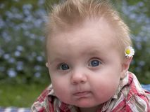 I make this flower look good. Close up of a six month old boy stock photo