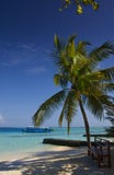 I Maldives immagine stock