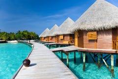 I Maldives. Una strada di legno sopra l'oceano Immagini Stock
