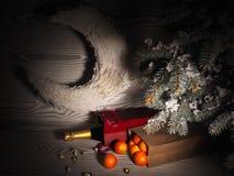 I mandarini arancio si avvicinano agli alberi dell'inverno Umore di natale Fotografia Stock