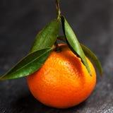 I mandarini freschi fruttificano con le foglie sulla tavola di legno immagini stock