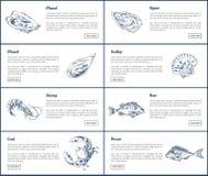 I manifesti dell'ostrica e della cozza hanno messo l'illustrazione di vettore illustrazione vettoriale