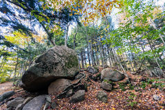 I massi glaciali in Franconia dentellano il parco di stato, New Hampshire fotografia stock libera da diritti