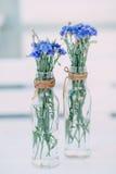 I mazzi dei fiordalisi decorano la tavola in un caffè Immagine Stock