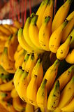 Mazzi di banane gialle fresche Fotografia Stock Libera da Diritti