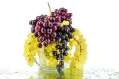 I mazzi di uva rossa e bianca in vaso rotondo di vetro sul fondo bianco dello specchio con la riflessione e di gocce di acqua han fotografia stock libera da diritti