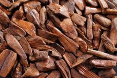 I mest arabiska länder är bukhooren de kända fallen för parfymerade tegelstenarna eller de wood chiperna Fotografering för Bildbyråer