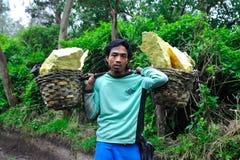 I minatori dello zolfo dal supporto Idjen Immagine Stock Libera da Diritti