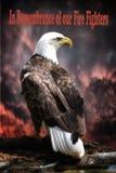 I minne av våra brandmän Eagle Royaltyfria Foton