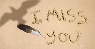 I Miss You. Like A Feather Ripped From The Chest Of A Gull, Something Has Been Missing Since The Day You Took Flight Stock Image