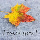 I miss you. English mourning card with autumn leaves stock illustration