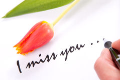 I miss you love. Hand writing I miss you to his lovely sweetheart on a piece of papper decorated with the red spring tulip flower Stock Photos