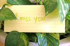 An i miss you message Royalty Free Stock Images