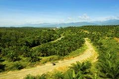 I mitt av naturen en fabrik för gömma i handflatanolja på Sumatra Indonesien Royaltyfri Foto