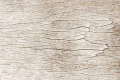 I modelli tessuti pastelli verdi della tela dal pavimento presiedono il fondo Fotografia Stock Libera da Diritti
