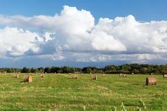 I mucchi di fieno o il fieno rotola sul campo dell'estate Fotografia Stock Libera da Diritti