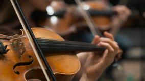 I musicisti giocano i violini nella società filarmonica video d archivio