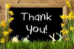 I narcisi, uovo di Pasqua, coniglietto, testo vi ringraziano Fotografie Stock