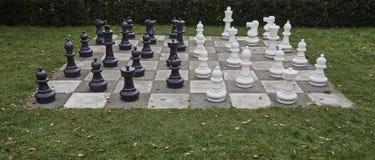 I naturlig storlek schackbräde och stycken Royaltyfri Fotografi