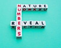 I numeri rivelano la natura Fotografie Stock Libere da Diritti