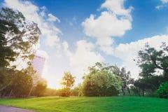 I paesaggi parcheggiano ed il fondo dell'alba o del cielo ritocca Fotografia Stock Libera da Diritti