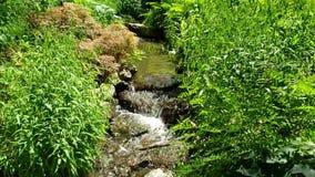 I paesaggi piacevoli progettano con la cascata nel giardino stock footage