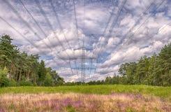 I pali dell'elettricità, il paesaggio con cielo blu e il heide fiorisce, erba verde Immagini Stock Libere da Diritti