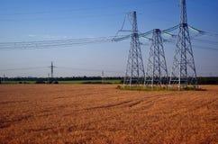 I pali elettrici aumentano sopra il campo con grano Fotografie Stock Libere da Diritti