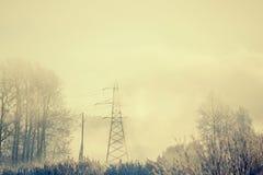 I pali nella foschia gelida, mattina di inverno Fotografie Stock