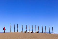 I pali sull'isola di Olkhon, Russia immagine stock
