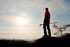I pali trakking del hikerwith dell'uomo stanno sulla roccia del picco di montagna Il piccolo albero dei bonsai del pino si svilup Fotografia Stock