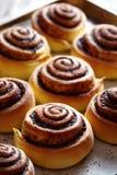 I panini al forno rotola di recente con il materiale da otturazione del cacao e della cannella Primo piano Kanelbulle - dessert c immagini stock libere da diritti