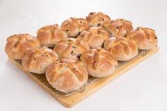 I panini trasversali caldi appena al forno/hanno cucinato su uno scaffale di raffreddamento del cavo Fotografia Stock Libera da Diritti