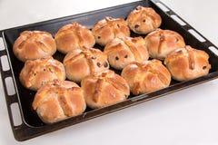 I panini trasversali caldi appena al forno/hanno cucinato in vassoio di cottura Immagini Stock Libere da Diritti